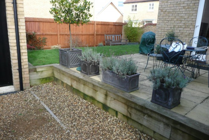 How The Garden Looked On Survey Day; Very Tired In Terms Of Materials And  The