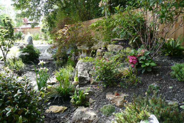 In the furthest shadier corner of the garden is the little traditional Japanese garden. It was created with many tons of specialist soil and rocks.