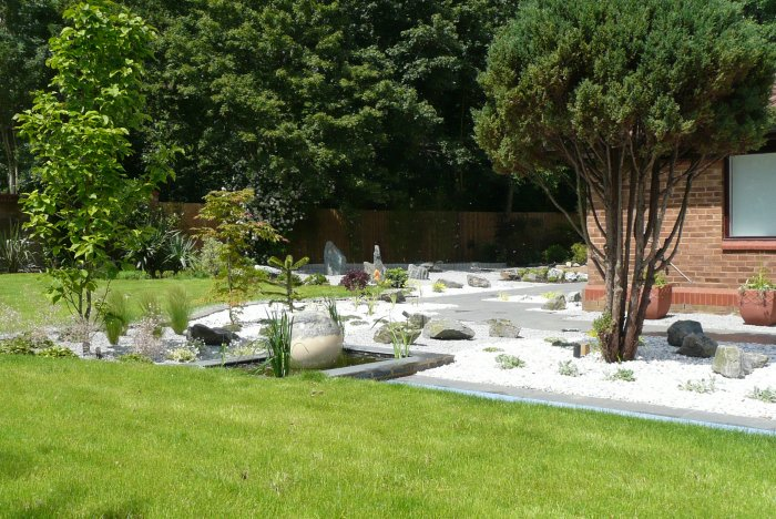 The gravel garden area has a lovely and rare Magnolia planted in it.