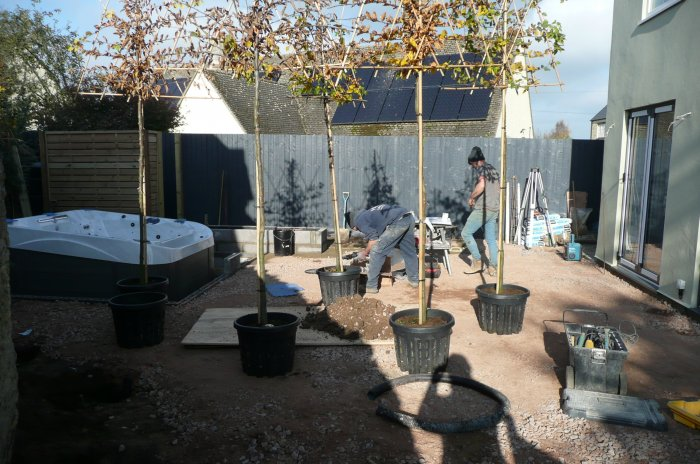 We were using pleached trees to add extra privacy; because of the working space these were planted very early on. The hot tub has been partially sunken.
