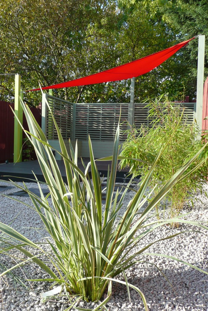 The red sail shade is a really striking feature in the garden. The client's sofa was the same red, so the link between inside and out has some drama.