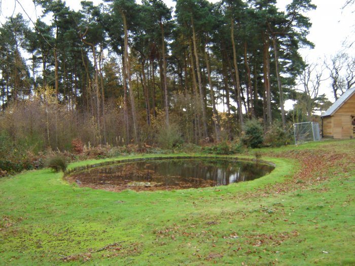 The Site Was Lovely, Very Peaceful With Extensive Woodland And An Old Pond  Needing Some